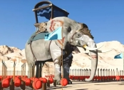 Quran story Elephant
